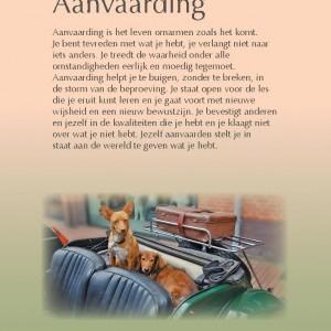 aanvaarding-page-001