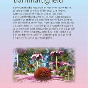barmhartigheid-page-001