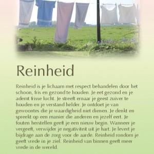 reinheid-page-001