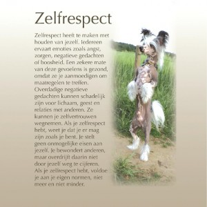 zelfrespect-page-001